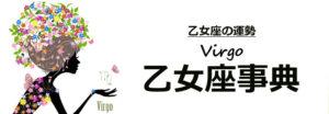 virgo-link